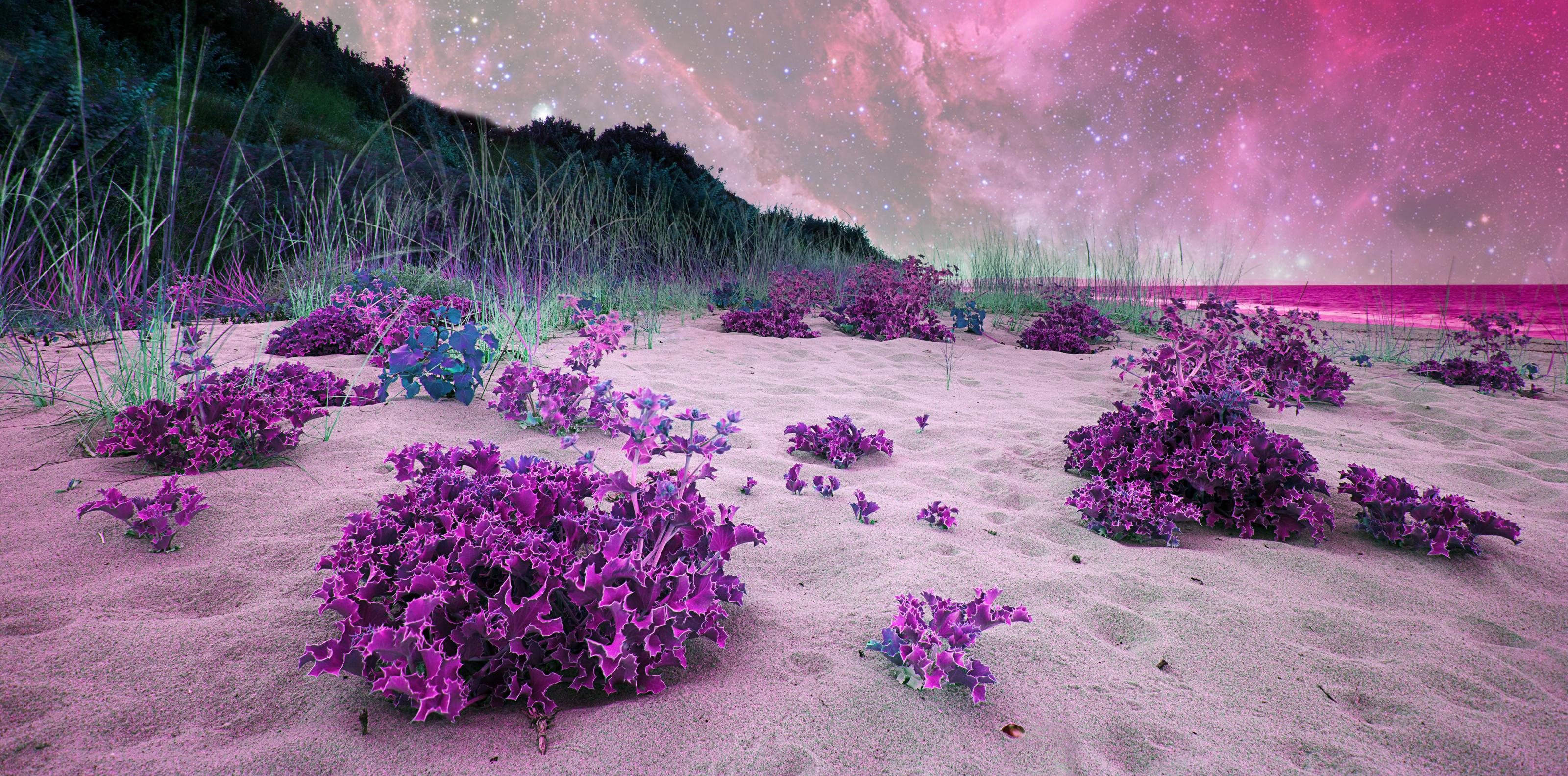 landscape@bayer-bayer.com